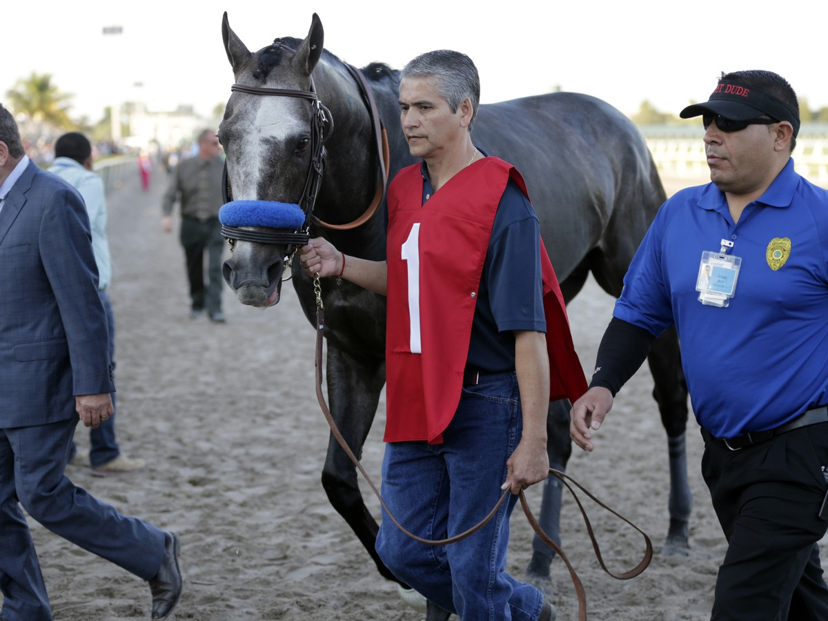 Absolútna senzácia! Najrenomovanejší kôň planéty prehral pri stávkovej kvóte 1,05