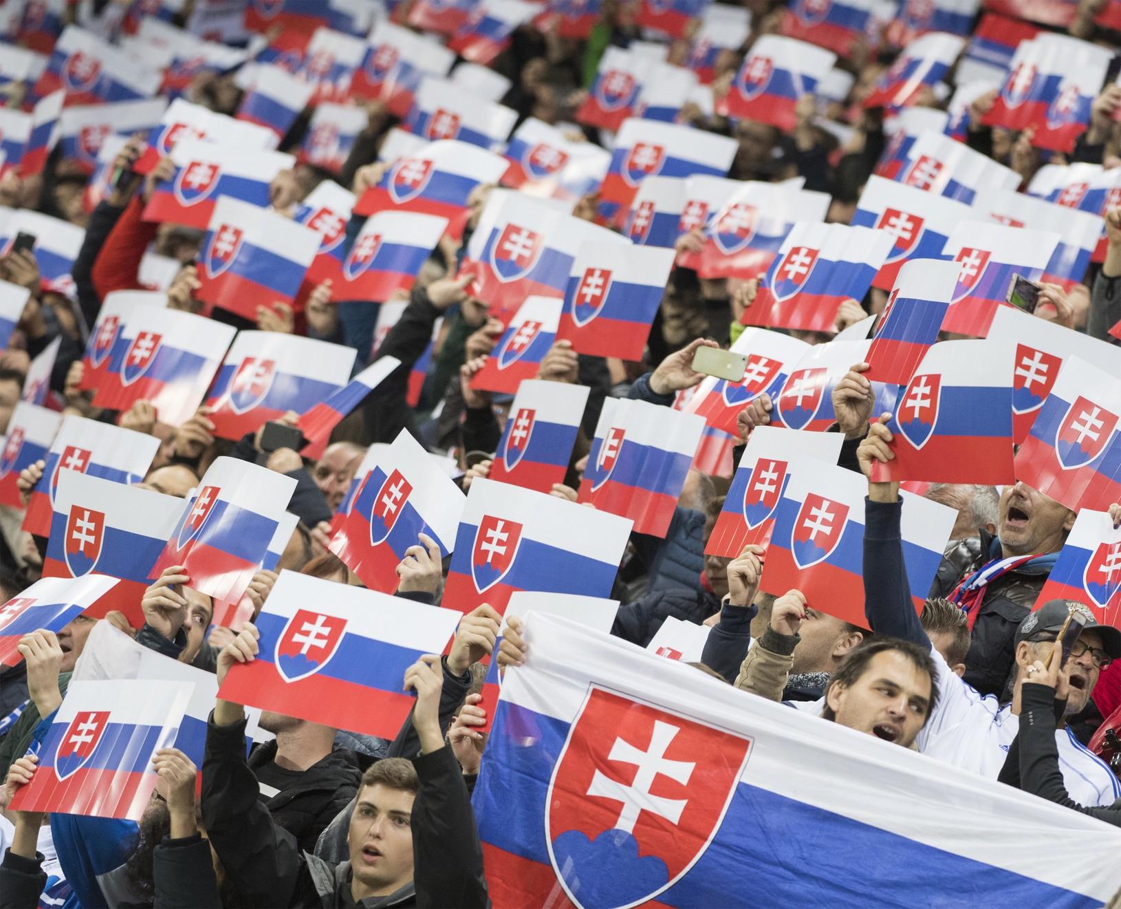Slovenskí fanúšikovia v zápase