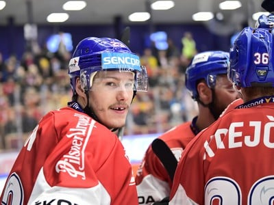 Český hokejista Dmitrij Jaškin
