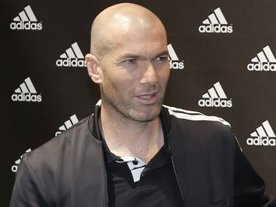 Zinedine Zidane a David