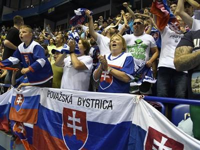 Slovenskí fanúšikovia v Steel aréne