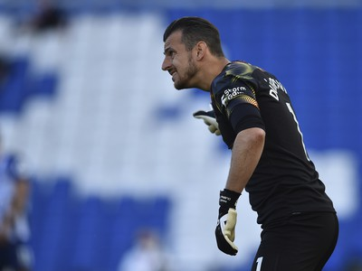 Martin D�bravka v drese Newcastlu United