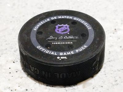 NHL sa vracia do
