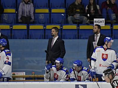 Striedačka slovenskej hokejovej reprezentácie