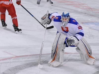 Na snímke brankár Slovenska Andrej Košarišťan