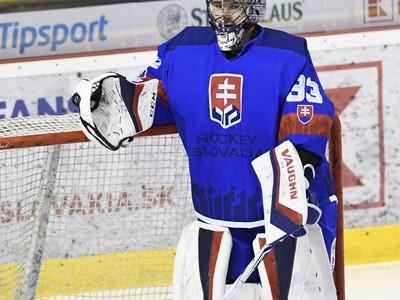 Na snímke brankár Slovenska Július Hudáček