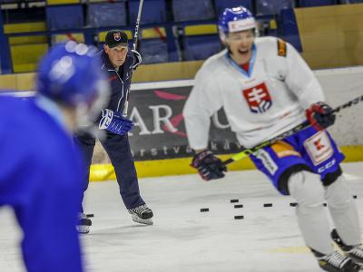 Tréner Craig Ramsay počas prípravného kempu slovenskej hokejovej reprezentácie.