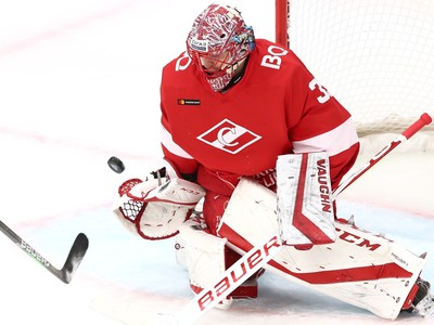 Slovenský hokejový brankár Július