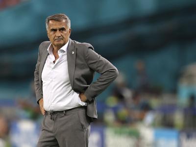 Tréner tureckej futbalovej reprezentácie