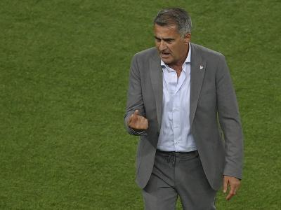 Tréner turckej futbalovej reprezentácie