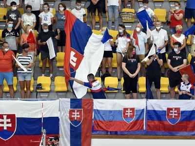 Slovenskí fanúšikovia na tribúne