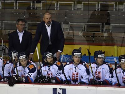 Slovenská striedačka s trénerom