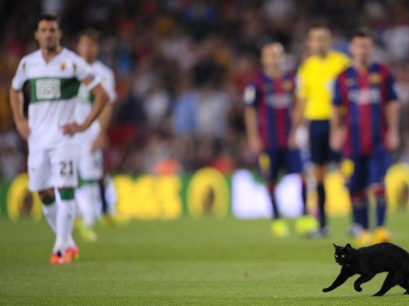 Otvárací duel Barcelony na Nou Campe sprevádzala čierna mačka