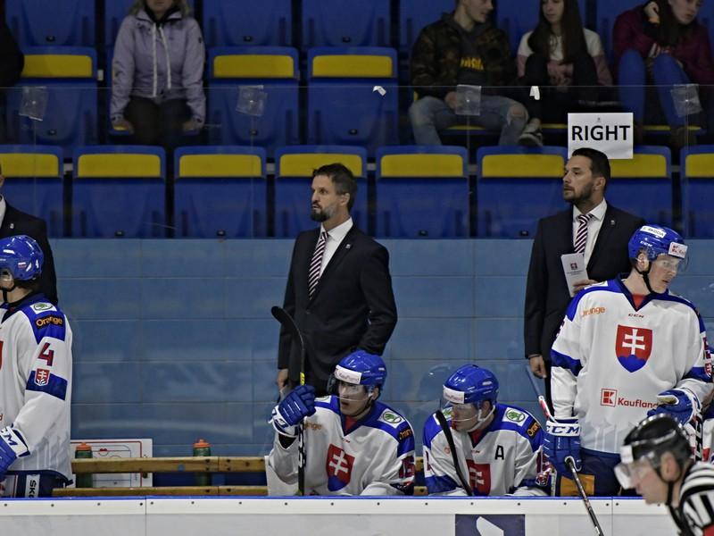 Striedačka slovenskej hokejovej reprezentácie do 20 rokov