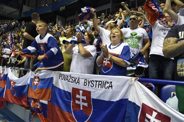 Slovenskí fanúšikovia v Steel