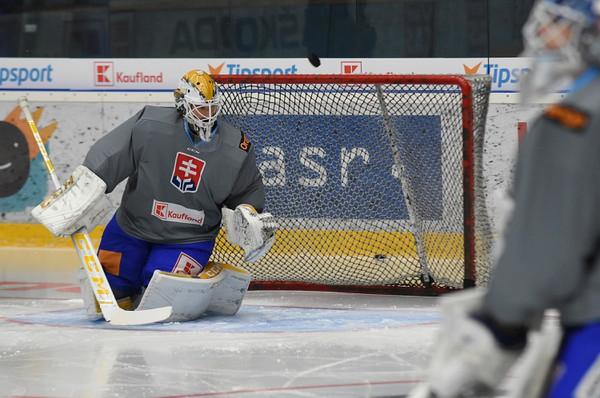 Brankár slovenskej hokejovej reprezentácie