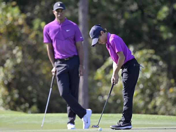 Tiger Woods so synom