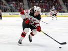 Studenič sa dočkal premiéry v NHL