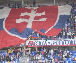 Slovensko do toho!